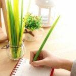 ручка в виде травинки