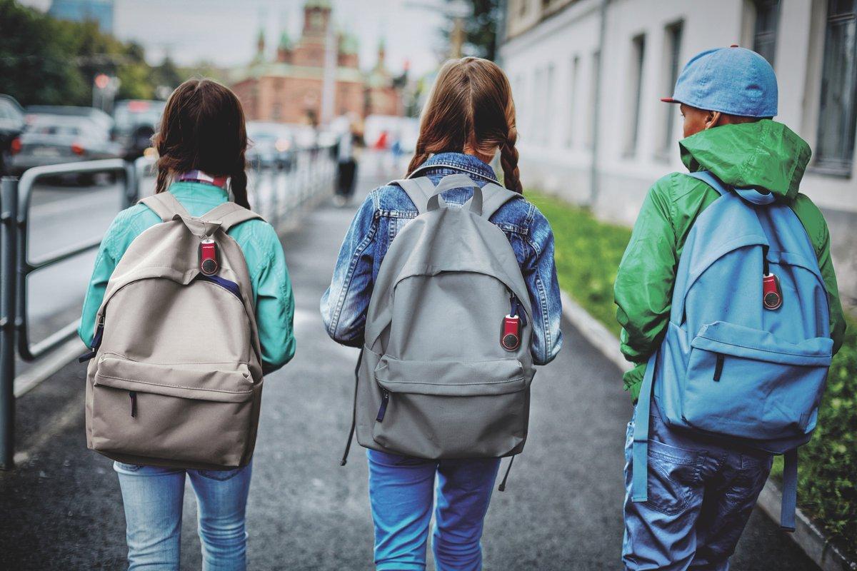 bea009d5fdf2 ... сохранности учебных принадлежностей и даже настроения ребенка. Что  купить к новому учебному году: школьный рюкзак, ранец или другой вид сумки?
